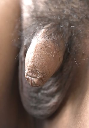 Hairy Shemale Porn